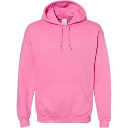 Textiel Sweaters / Sweatshirts Gildan Hooded Azalea