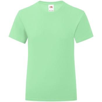 Textiel Meisjes T-shirts korte mouwen Fruit Of The Loom Iconic Neo Munt