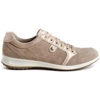Schoenen Dames Lage sneakers Imac 506341 Beige