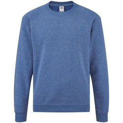 Textiel Kinderen Sweaters / Sweatshirts Fruit Of The Loom Raglan Heather Royaal