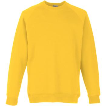 Textiel Kinderen Sweaters / Sweatshirts Fruit Of The Loom Raglan Zonnebloem