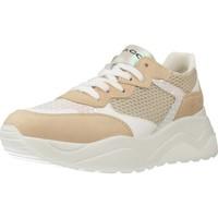 Schoenen Dames Lage sneakers IgI&CO 5168022 Bruin