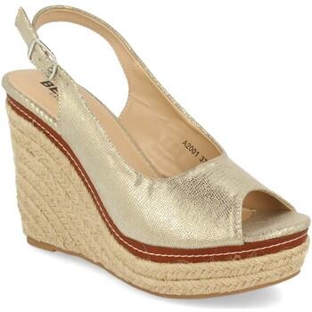 Schoenen Dames Espadrilles Benini A2001 Plata