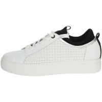 Schoenen Dames Lage sneakers Wrangler WL01601A White