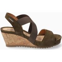 Schoenen Dames Sandalen / Open schoenen Mephisto GIULIANA Groen