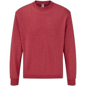Textiel Heren Sweaters / Sweatshirts Fruit Of The Loom 62202 Heather Rood