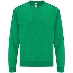 Textiel Heren Sweaters / Sweatshirts Fruit Of The Loom 62202 Heather Groen