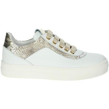Schoenen Meisjes Lage sneakers Le Petit Bijou 6430LPB White/Gold