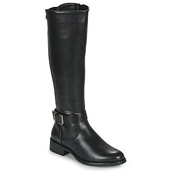 Schoenen Dames Hoge laarzen Les Petites Bombes ARINA Zwart