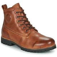 Schoenen Heren Laarzen Blackstone  Brown