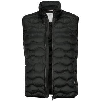 Textiel Heren Dons gevoerde jassen Nimbus NB79M Zwart