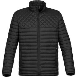 Textiel Heren Dons gevoerde jassen Stormtech ST169 Zwart