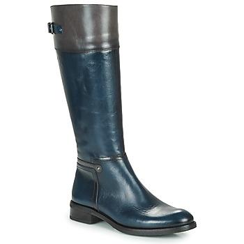 Schoenen Dames Hoge laarzen Dorking TIERRA Blauw / Grijs