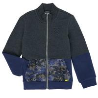 Textiel Jongens Sweaters / Sweatshirts Ikks XR17103 Grijs