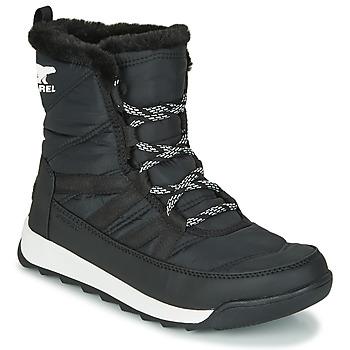 Schoenen Dames Laarzen Sorel WHITNEY II SHORT LACE Zwart