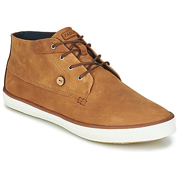 Schoenen Heren Hoge sneakers Faguo WATTLE Brown