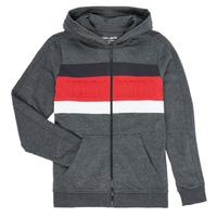 Textiel Jongens Sweaters / Sweatshirts Teddy Smith ANY Zwart