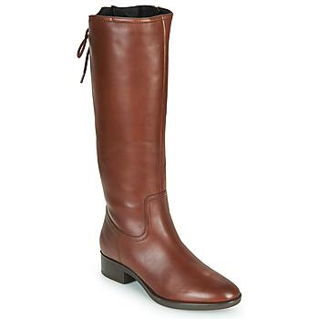 Schoenen Dames Hoge laarzen Geox FELICITY Brown