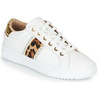 Schoenen Dames Lage sneakers Geox PONTOISE Wit / Leopard