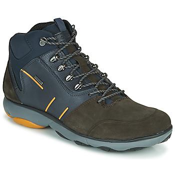 Schoenen Heren Laarzen Geox NEBULA 4 X 4 B ABX Marine / Brown