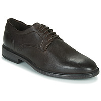 Schoenen Heren Derby Geox TERENCE Brown