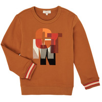Textiel Jongens Sweaters / Sweatshirts Catimini CR15024-63-C Brown