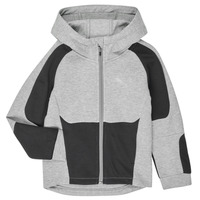 Textiel Jongens Sweaters / Sweatshirts Puma EVOSTRIPE HOODED JACKET Grijs