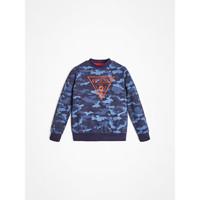Textiel Jongens Sweaters / Sweatshirts Guess L0YQ01-K82T0-PC74 Blauw