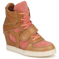 Schoenen Dames Hoge sneakers Ash COCA Brown / Corail