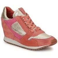Schoenen Dames Lage sneakers Ash DEAN BIS Goud / CORAIL / Roze