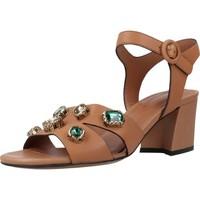 Schoenen Dames Sandalen / Open schoenen Bruno Premi BZ3601X Bruin