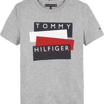 Textiel Jongens T-shirts korte mouwen Tommy Hilfiger KB0KB05849-P6U Grijs