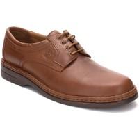 Schoenen Heren Derby Comodo Sport Zapatos con cordones de piel de hombre by Marron