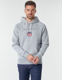 Textiel Heren Sweaters / Sweatshirts Gant GANT SHIEL HOODIE Grijs