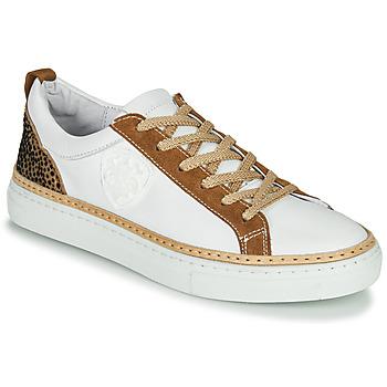 Schoenen Dames Lage sneakers Philippe Morvan CORK V1 NAPPA BLANC Wit /  camel