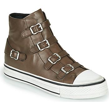 Schoenen Dames Hoge sneakers Ash VIRGIN FANGO Grey