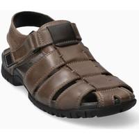 Schoenen Heren Sandalen / Open schoenen Mephisto BASILE Brown