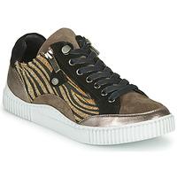 Schoenen Dames Lage sneakers Regard IDEM V6 CRIS TAUPE Brown