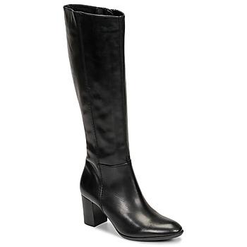 Schoenen Dames Hoge laarzen Fericelli NAVAROIS Zwart