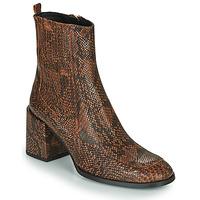 Schoenen Dames Enkellaarzen Fericelli NAKE Zwart / Brown