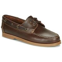 Schoenen Heren Bootschoenen Casual Attitude REVORO Brown