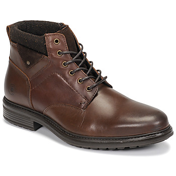 Schoenen Heren Laarzen Casual Attitude NAPILLON Brown
