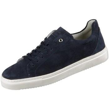 Schoenen Heren Lage sneakers Sioux Tils Bleu marine