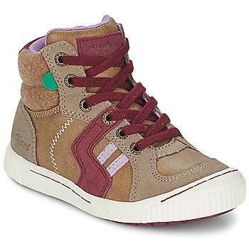 Schoenen Meisjes Hoge sneakers Kickers ZIGUERS Beige / Bordeaux