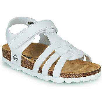 Schoenen Meisjes Sandalen / Open schoenen Citrouille et Compagnie JANISOL Wit