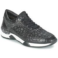 Schoenen Dames Lage sneakers Mjus KRUPA Zwart