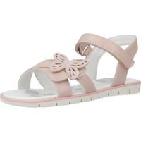 Schoenen Meisjes Sandalen / Open schoenen Chicco 1063623 Roze