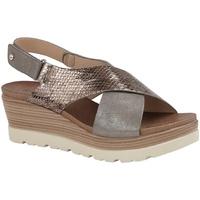 Schoenen Dames Sandalen / Open schoenen Cipriata  Tinnen/Brons