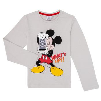 Textiel Jongens T-shirts met lange mouwen TEAM HEROES  MICKEY Grijs