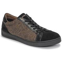 Schoenen Heren Lage sneakers Kost CYCLISTE 55 Zwart / Brown